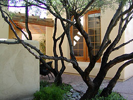 Tucson Artisan guest house.